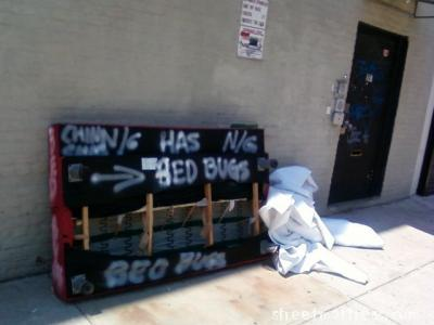 street mattress submission with bedbugs from greenpoint